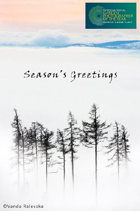 IGPOTY Season's Greetings 2014