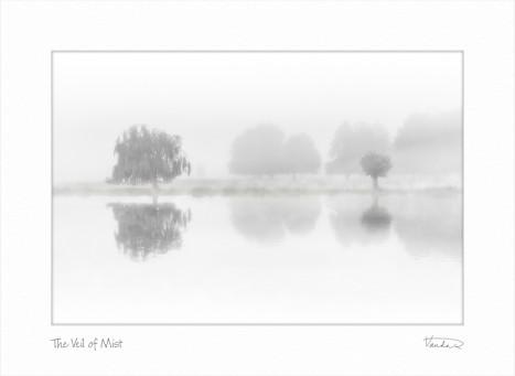 The Veil of Mist