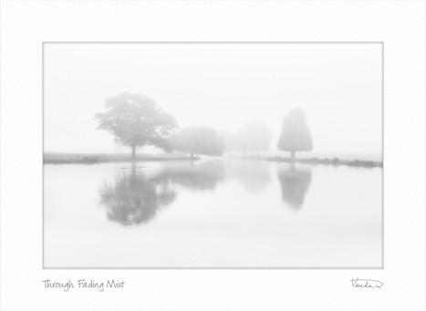 Through Fading Mist