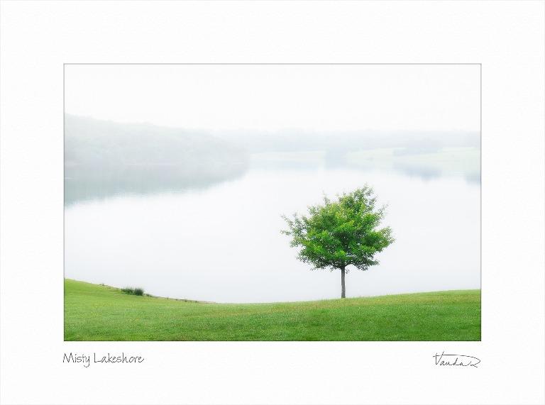 Misty Lakeshore